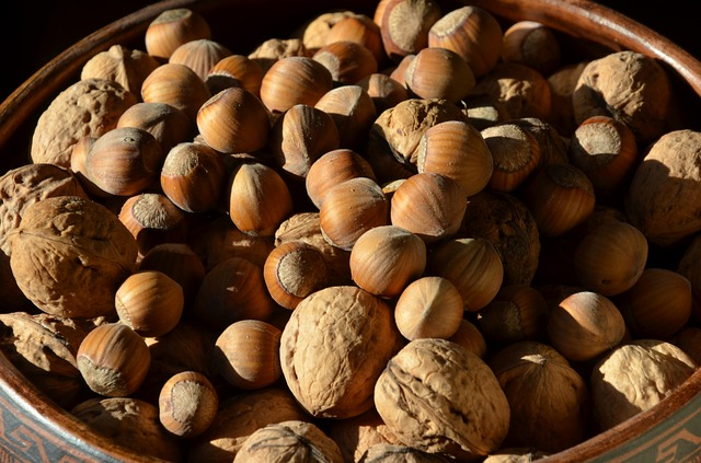 nuts-511492_640